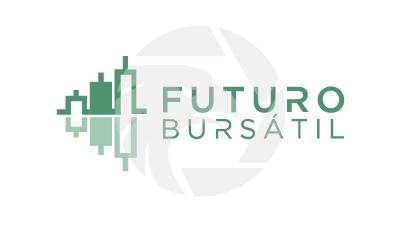 FUTURO BURSATIL