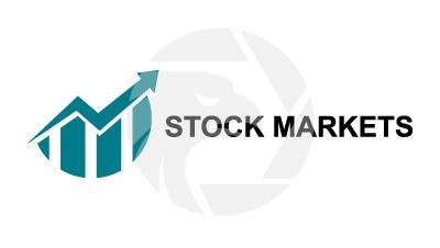 Stock  Market Dynamics