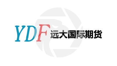 YDF远大国际